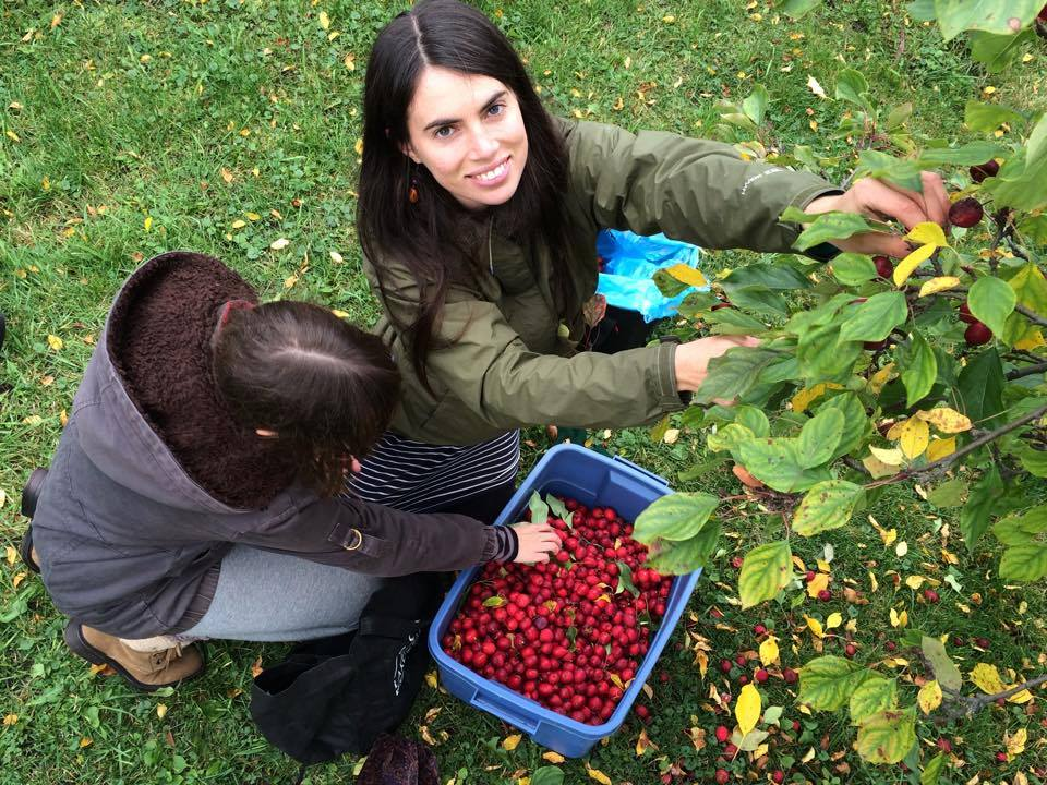 Sarah leading a fruit gleaning event in Thunder Bay Ontario